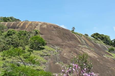 Sitio Monte Cristo: natureza em silencio.