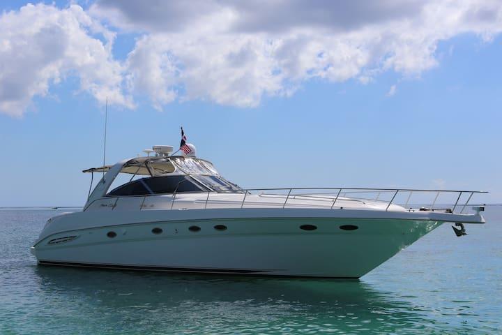 "Sea Ray Sundancer Luxury Yatch 48"""