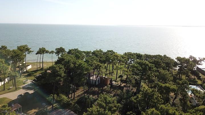 Villa Ile de Ré avec accès plage du jardin ****