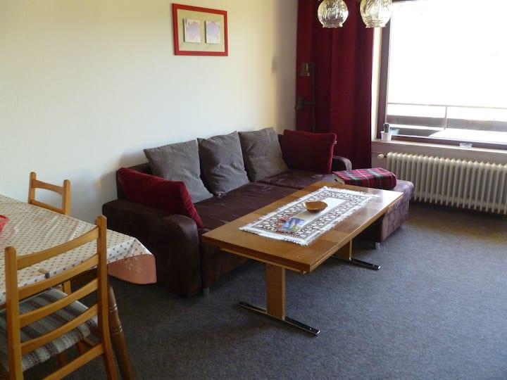 Haus Monika Ferienwohnungen, (Herrischried), Ferienwohnung Nr. 1, 38 qm, Balkon, 1 Wohn-/Schlafzimmer, max. 2 Personen