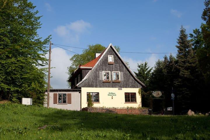 Sängerwiese - Eisenach - Almhütte