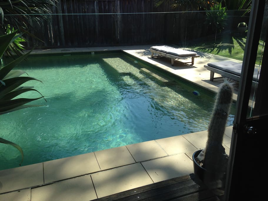 Private pool area to lounge in the sun and swim next to cabin.