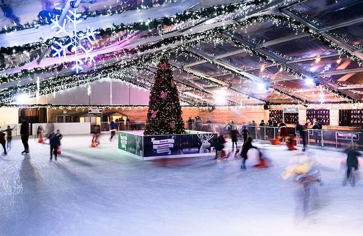 Ice Skating ring for your leisure