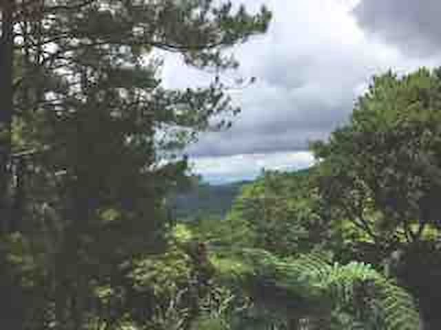 Scenic route to the summer capital of the philippines