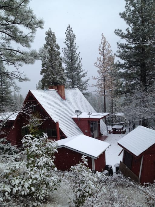 Owl Lodge in Light Snow - WE are located right at the Snow line