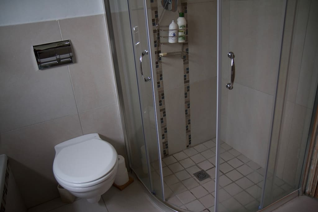 Modern bathroom and shower