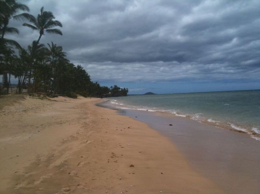 Tons of sandy, unspoiled beach