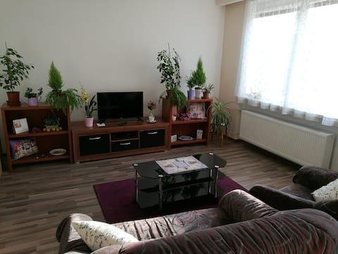 Spacious apartment near Brno. Samostatný byt v RD.