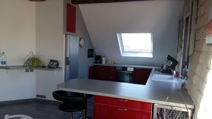 Beau Duplex Ittenheim à 10 minutes de STRASBOURG - Ittenheim - Appartement