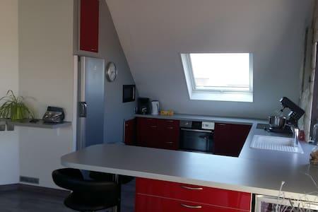 Beau Duplex Ittenheim à 10 minutes de STRASBOURG - Ittenheim