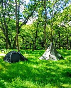 Dartmoor Wild Camping! - Hexworthy