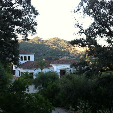 Romantischer Gästeturm auf herrlicher Finca - Gaucín