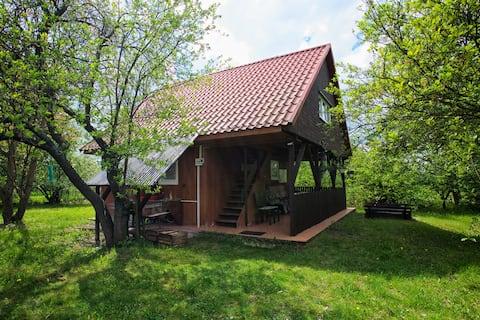 Domek w sadzie Leszczyny