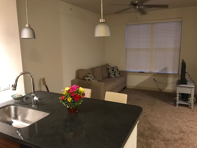 Cozy apartment located South of DT Austin!