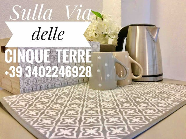 My home in cinque terre  Citra 011015-LT-1428