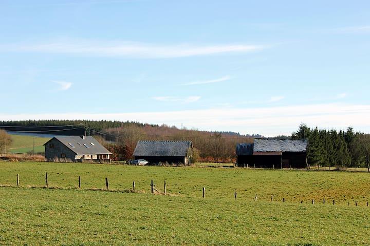 The Horses' farm