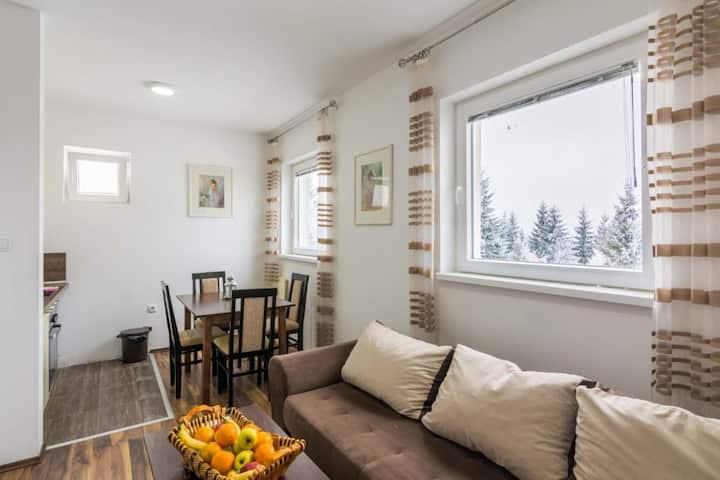 Apartman 3 - Vila Mozart