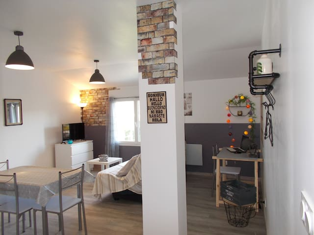 Appartement déco industrie centre ville Valence