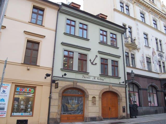 Apartment Bezrucova