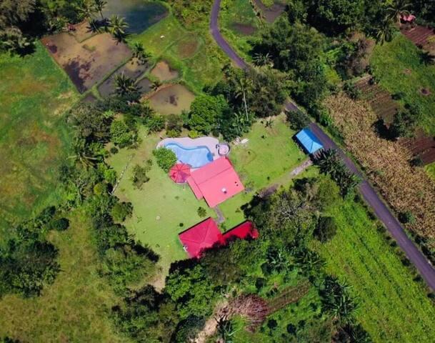 Garten Eden Tomohon