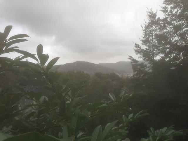 Quiet San Rafael studio cabin - San Rafael - Chalet