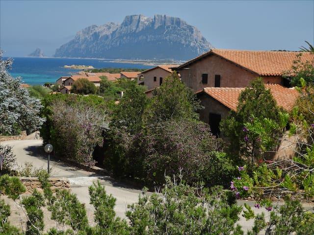 Villa Costa Corallina 200mt mare vista Tavolara