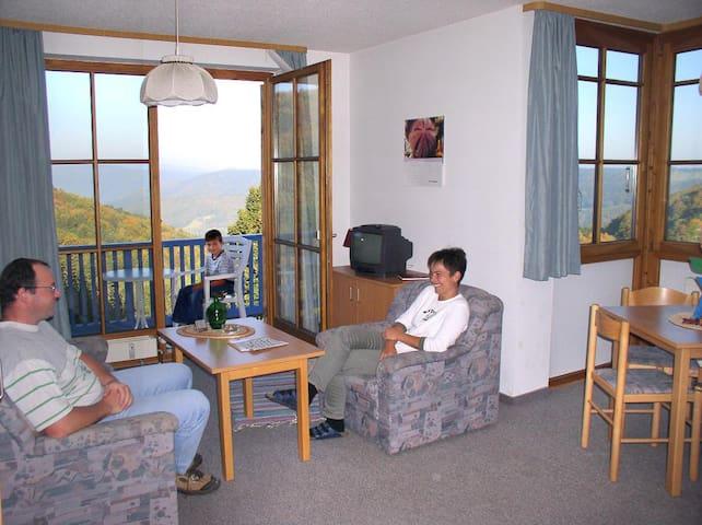 Appartement-Anlage Ferienland Sonnenwald (Schöfweg), Appartement Typ D (41qm) mit Balkon/Terrasse und Küchenzeile