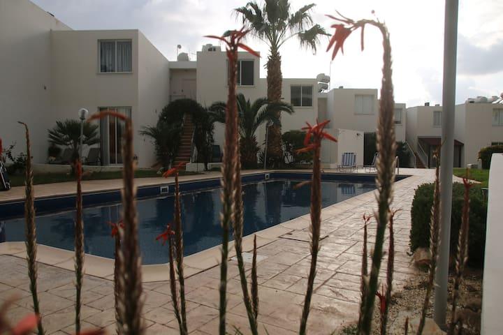 Peyia Coral Bay Evros Apartment Sea & Pool View