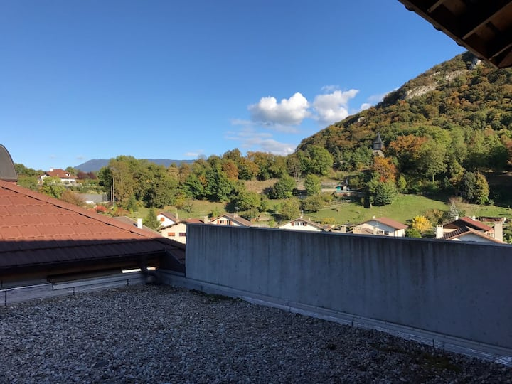 Appartement T2 48m² - vue Saleve - Geneve 10mn