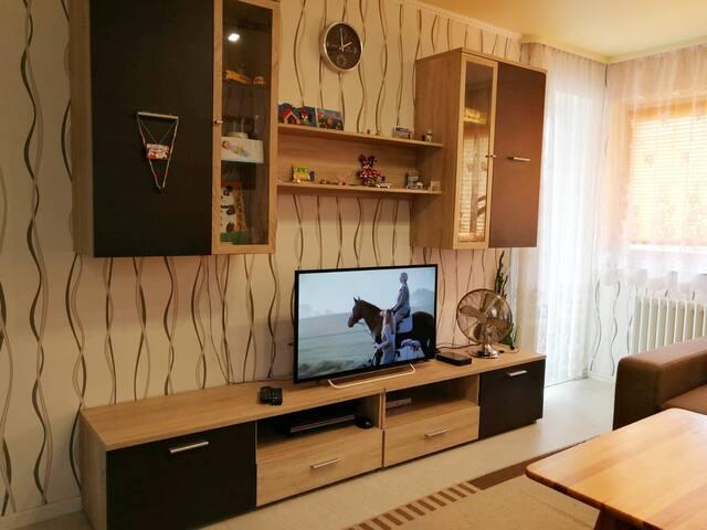 Gemütliche 2-Zimmer Wohnung mit WiFi in Davenstedt