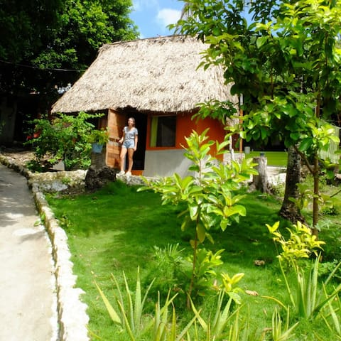 $199.00/ 4 Nights Cabin Spanish Classes and Meals