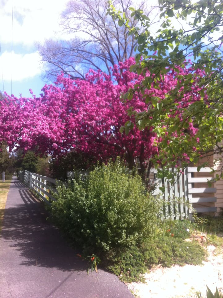Small place in the country - Castlemaine