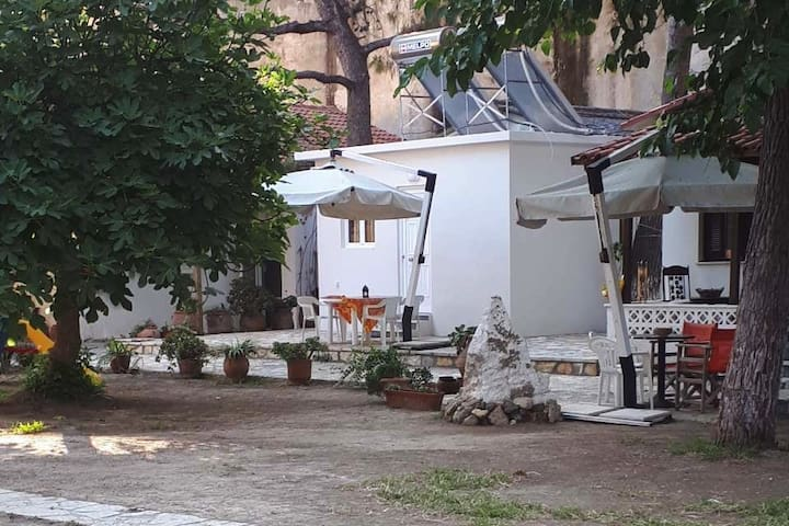 Cottages on Tsilivi beach, Zakynthos