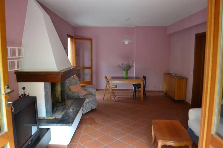 Casa degli Ulivi, spazioso appartamento a Lucca