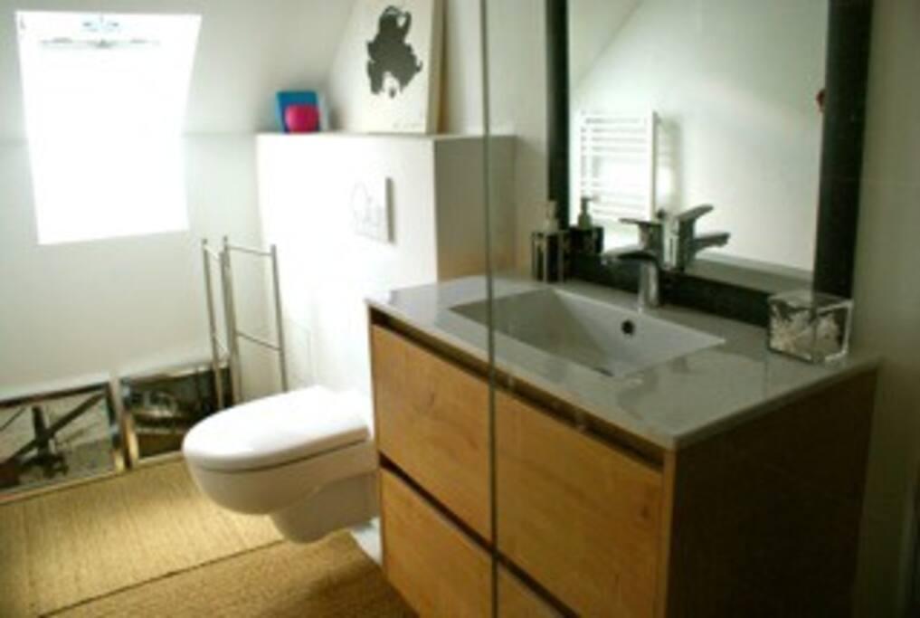 salle de bain ch2