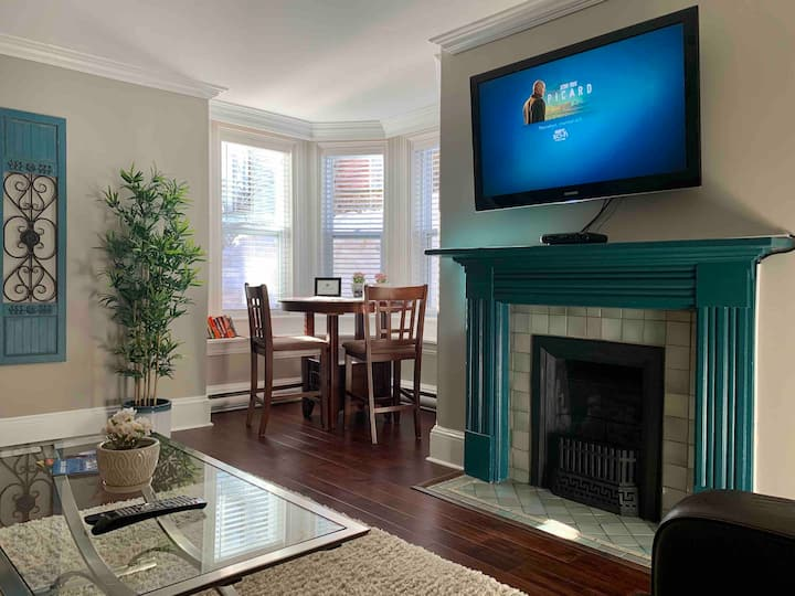 Gorgeous Downtown Apartment in Heritage Zone