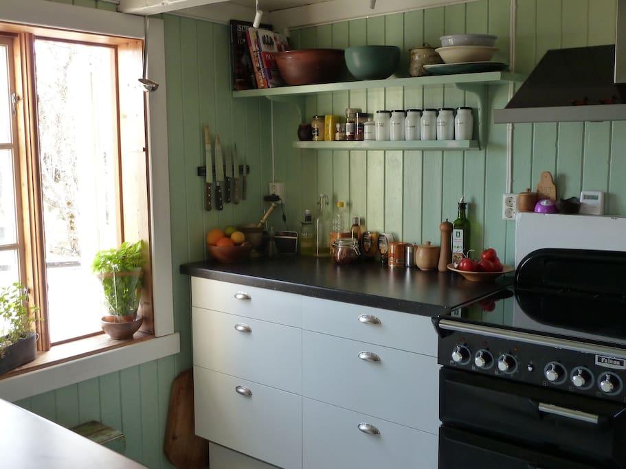 Nyoppusset og godt utstyrt kjøkken