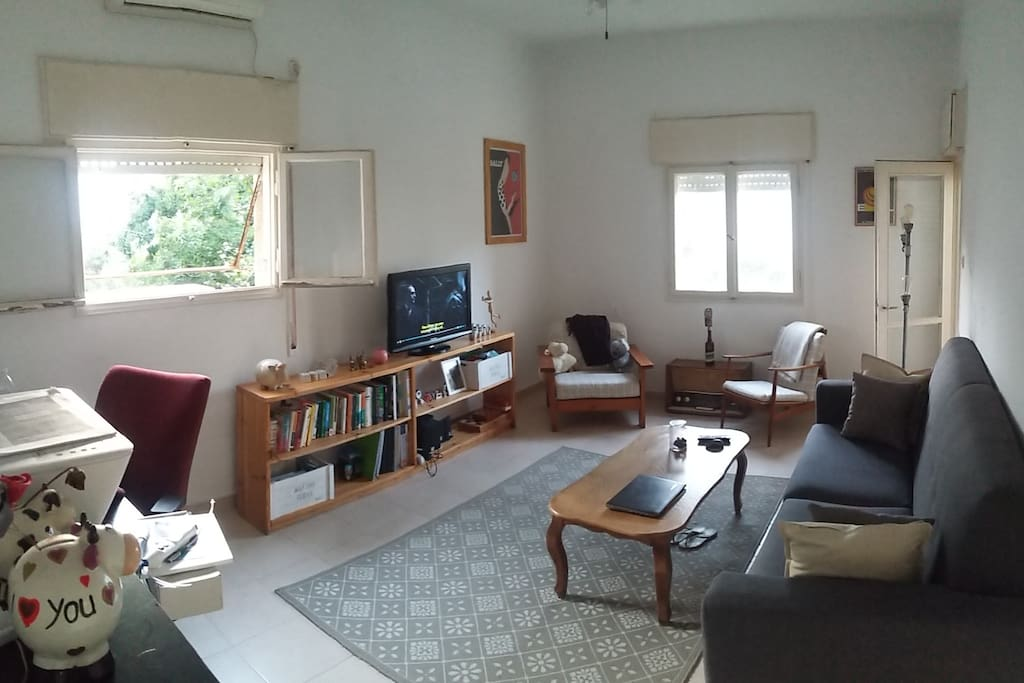 Living room with A/C, ceiling fan, a Windows PC TV set with amplified sound system