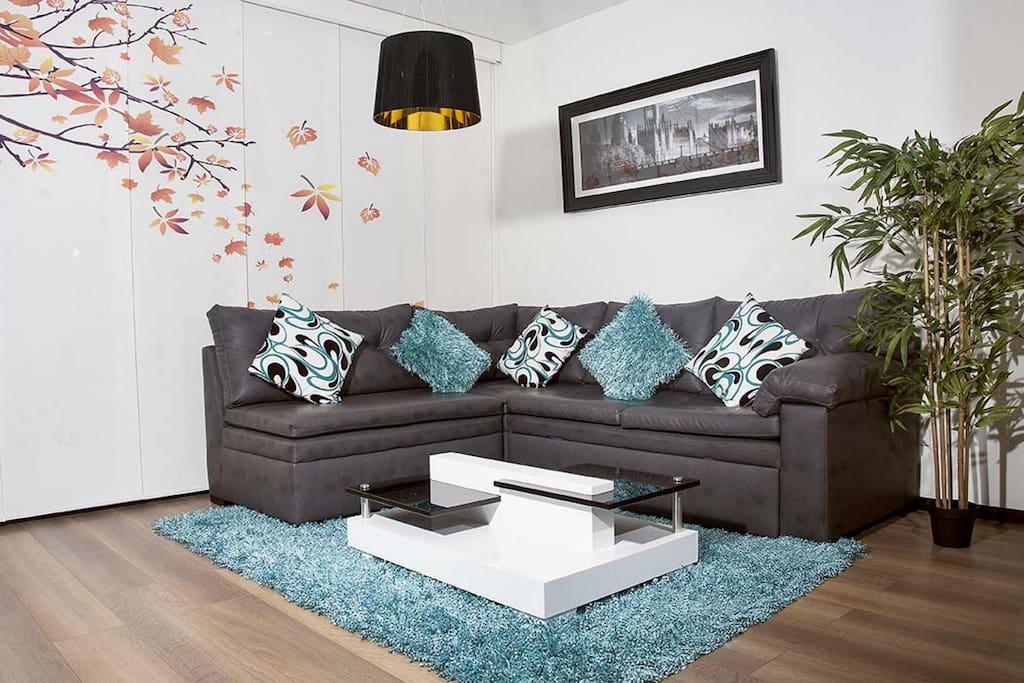 The very comfortable sofa.