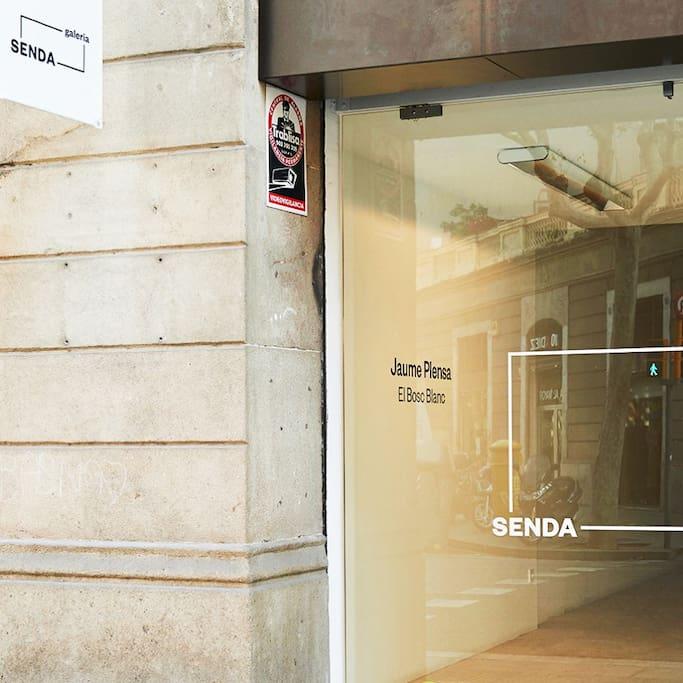 Galería Senda - Art Gallery의 사진