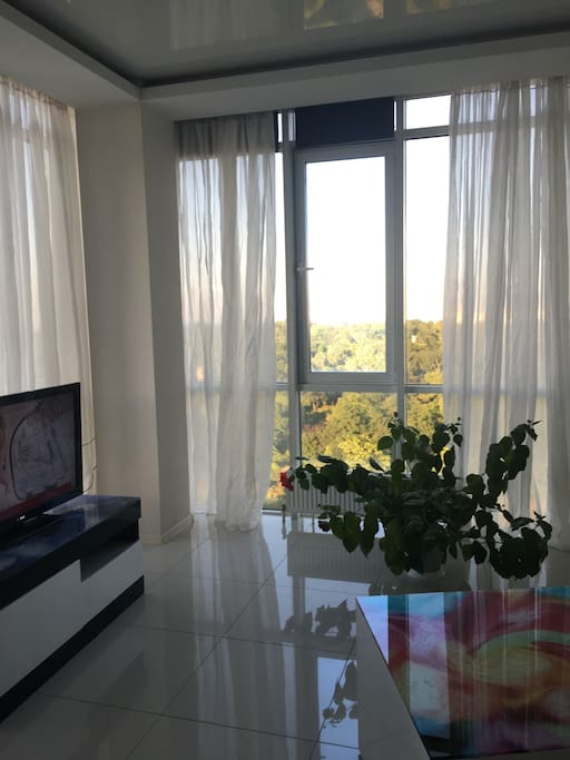 This is a studio apartment where the living room is shared with the kitchen. The room includes a large plasma television and full length windows with a great view of the botanical gardens and the Black Sea.