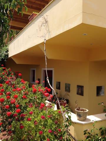 Complete apartment Dakanari Mirtos. - Lasithi - Apartment