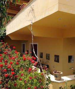 Complete apartment Dakanari Mirtos. - Lasithi