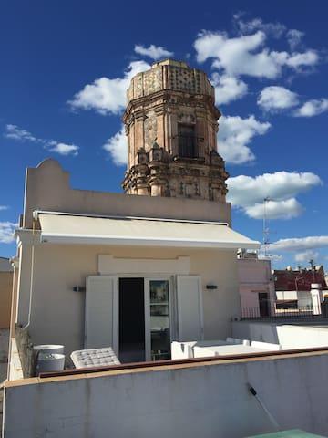Atico con Torre Mirador y Terraza Privada