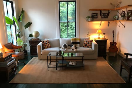 Spacious Downtown Apt Steps From Campus & Square