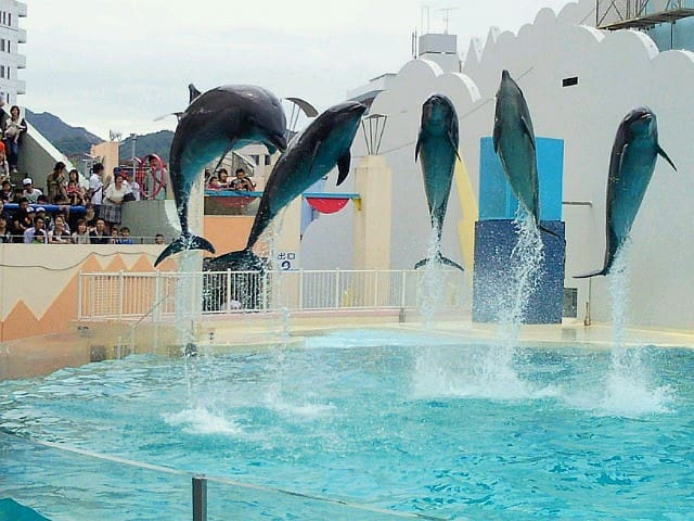 It's Suma Aqualife Park. You can go to the nearest station without having to transfer.(8min)