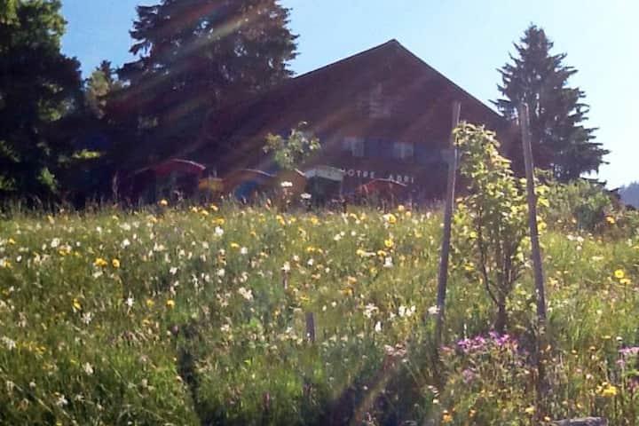 Montreux Jazz, vue lac et Alpes,musée Chaplin