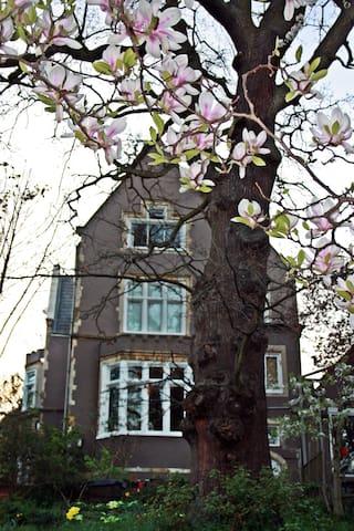 Private no sharing studio Pissarro Apartment - London - Apartment