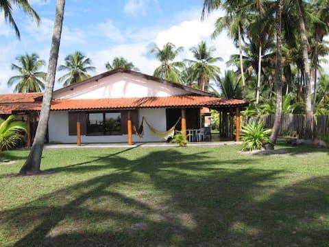 Lola's Beach House, SARGI
