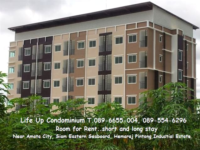 Life Up Condominium. Room for rent short and long stay near Amata City, Siam Eastern Seaboard, Hemaraj, Pintong Industrial Estate. T.089-6655-004, 089-554-6296